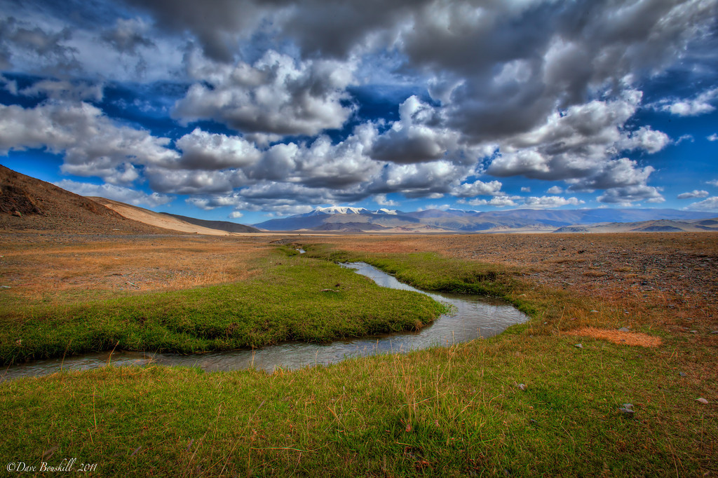 Best Time To Travel To Mongolia