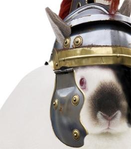 bunnyroman