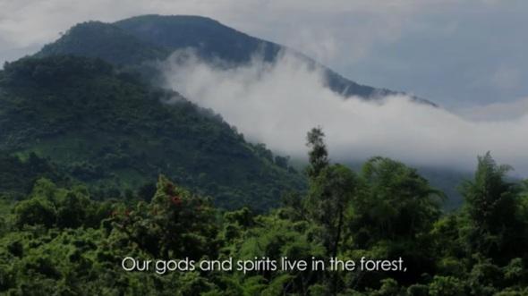 forestgods