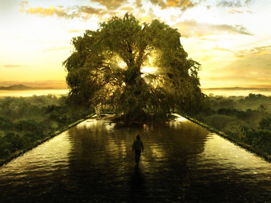 tree-of-lifee-1050x787