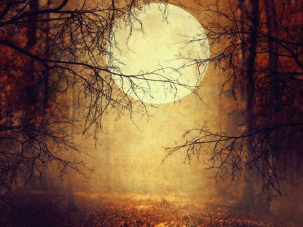 mi-halloween-moon